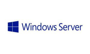 ms-windows-serwer